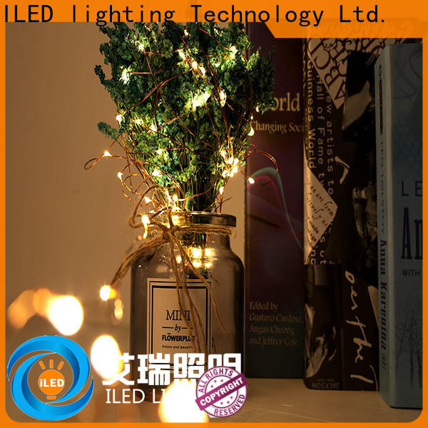 novel usb copper wire lights series for christmas