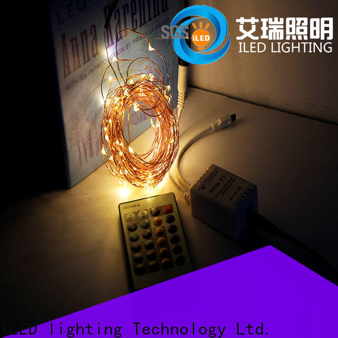 white plug in copper wire lights customized for household