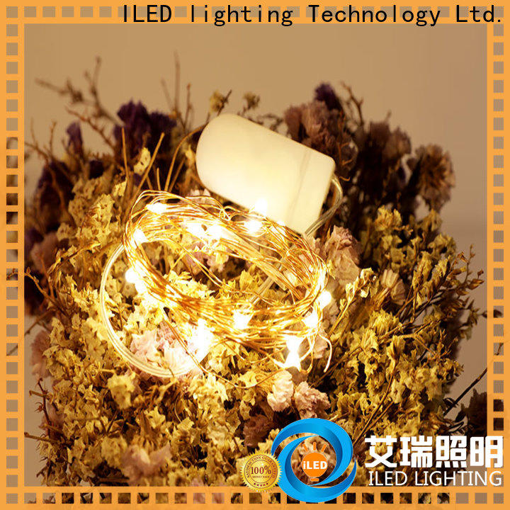 ILED remote battery wire lights manufacturer for wedding