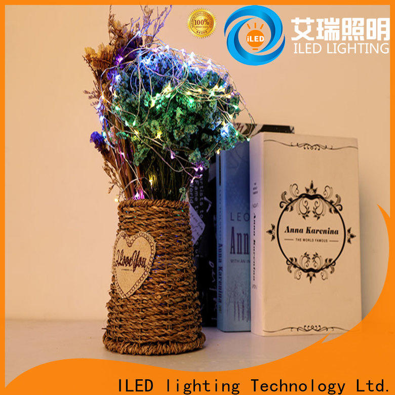 ILED waterproof battery operated fairy lights personalized for party