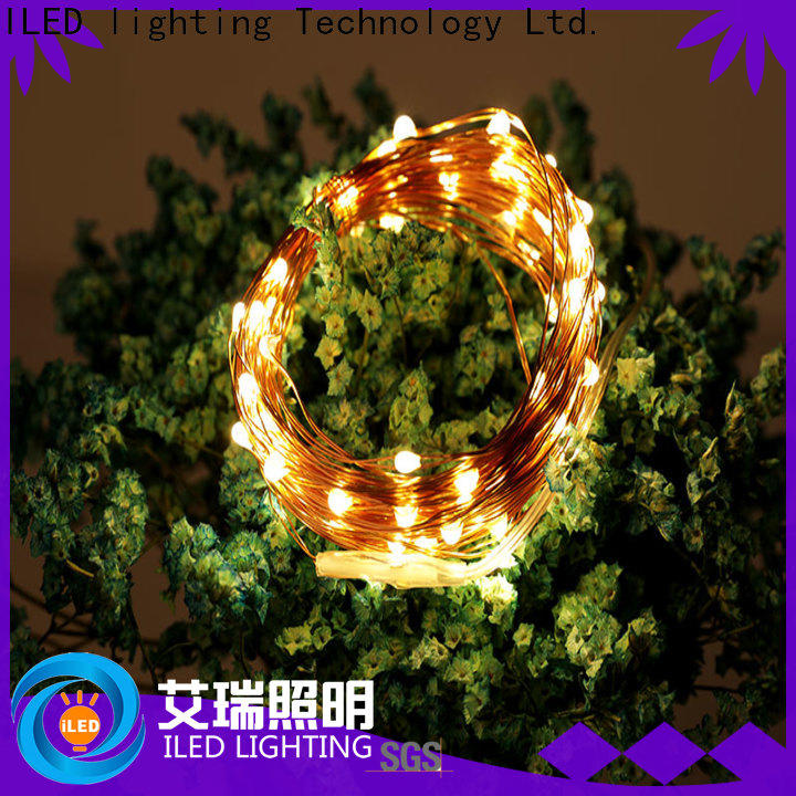 ILED operated battery powered fairy lights personalized for Christmas