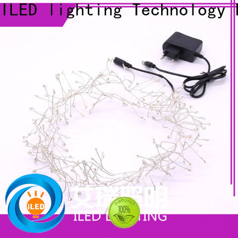 ILED plug in fairy lights customized for party