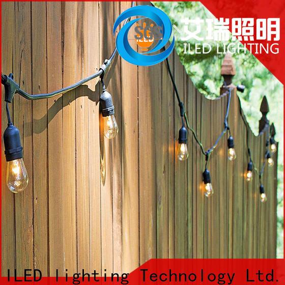 ILED hanging plug in festoon lights manufacturer for wedding