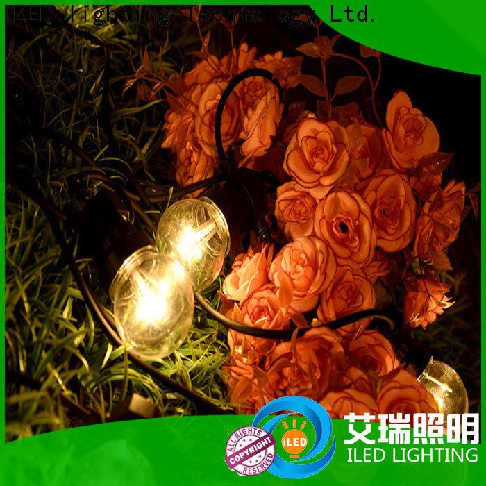 ILED novel festoon string lights design for indoor