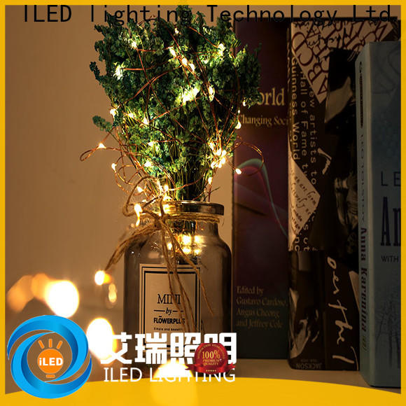ILED durable usb copper wire lights supplier for christmas