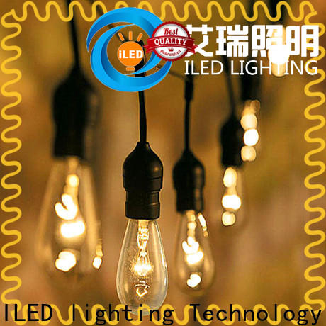 ILED garden string lights supplier for patio