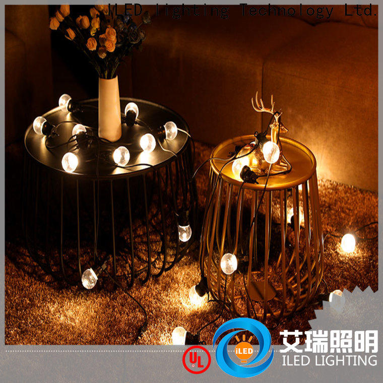 ILED festoon string lights supplier for indoor