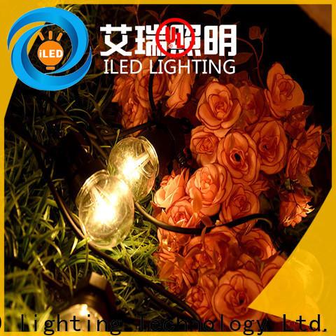 ILED white festoon string lights manufacturer for festival