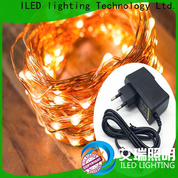 ILED dimmable fairy lights adaptor plug lamp for household