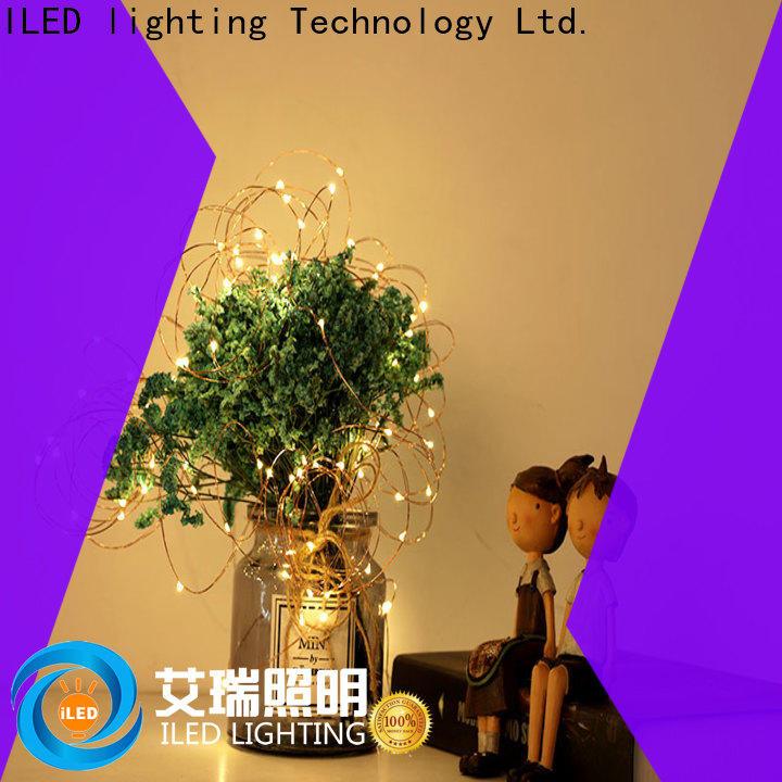 ILED battery powered fairy lights customized for Christmas