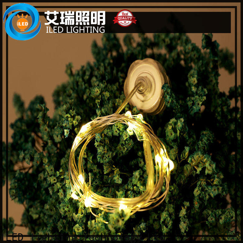 ILED remote battery wire lights personalized for indoor
