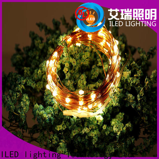 powered copper wire lights battery operated supplier for outdoor