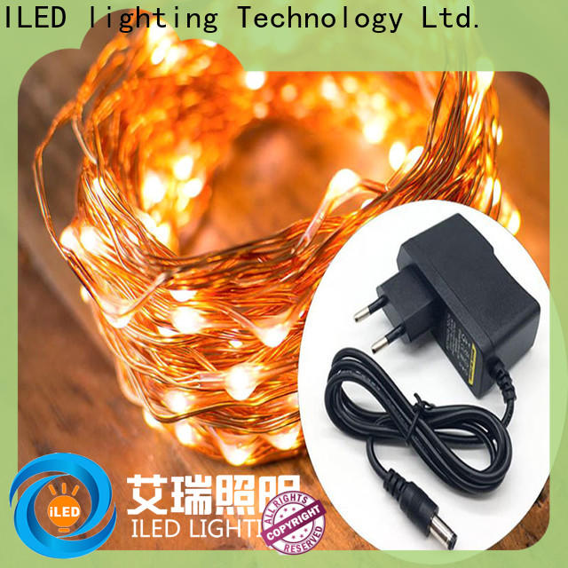 ILED fairy lights adaptor plug customized for christmas