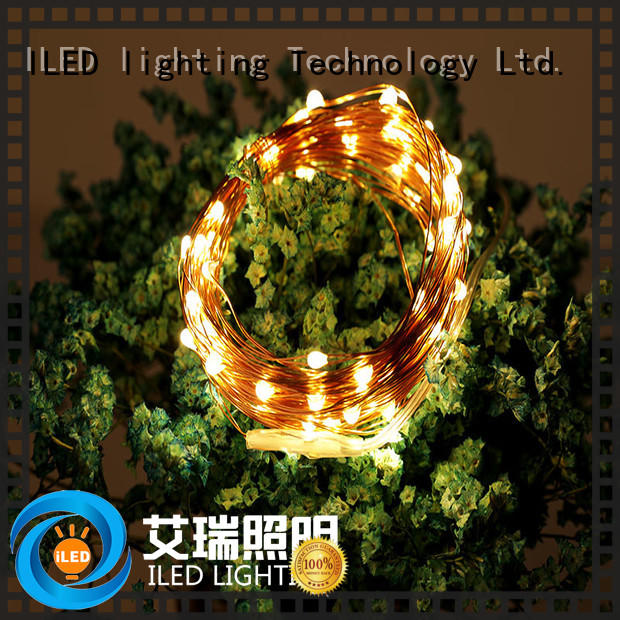 ILED powered battery operated fairy lights personalized for outdoor