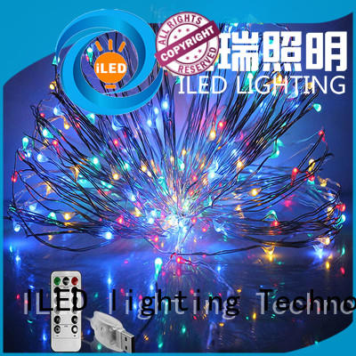 ILED durable usb copper wire lights series for decoration