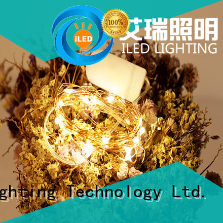 ILED battery christmas lights manufacturer for decoration