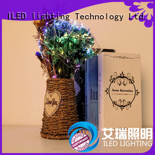 operated battery operated outdoor christmas lights customized for Christmas
