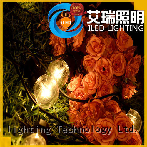 adapter coloured festoon lights bulbs for festival ILED