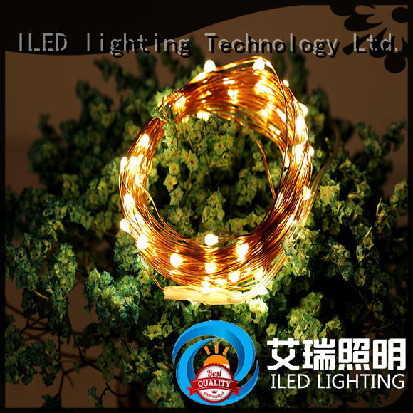 ILED copper wire fairy lights battery operated personalized for bistro