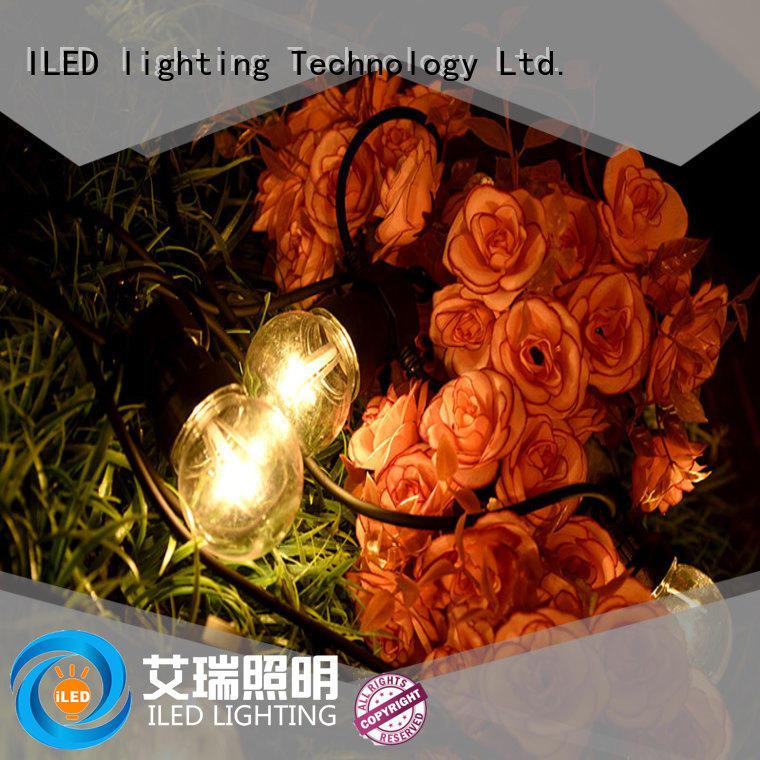 ILED standard led cafe string lights design for wedding