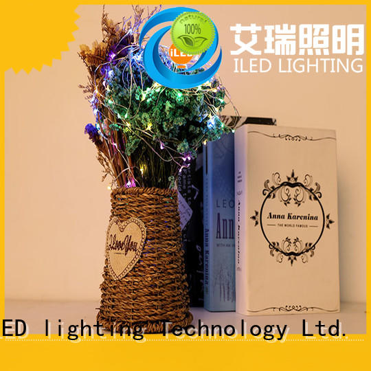 ILED battery operated wire lights lamp for Christmas