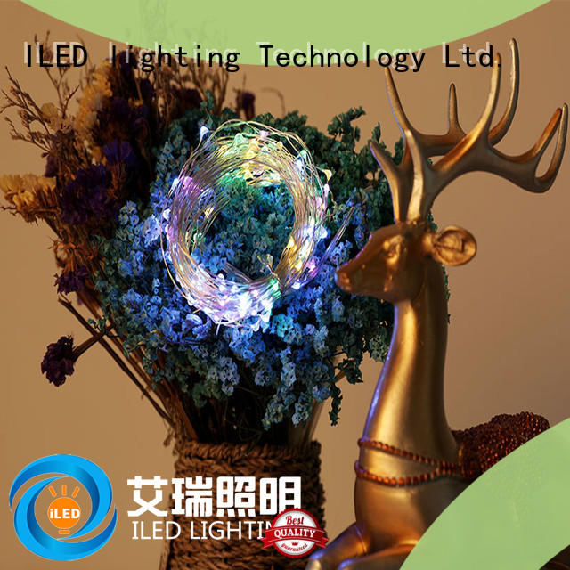 ILED novel usb copper wire lights series for decoration
