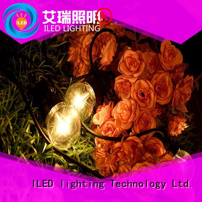 ILED novel coloured festoon lights manufacturer for outdoor