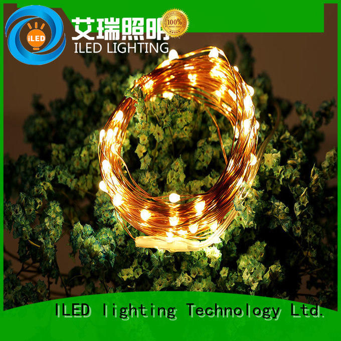 operated battery operated outdoor christmas lights supplier for Christmas