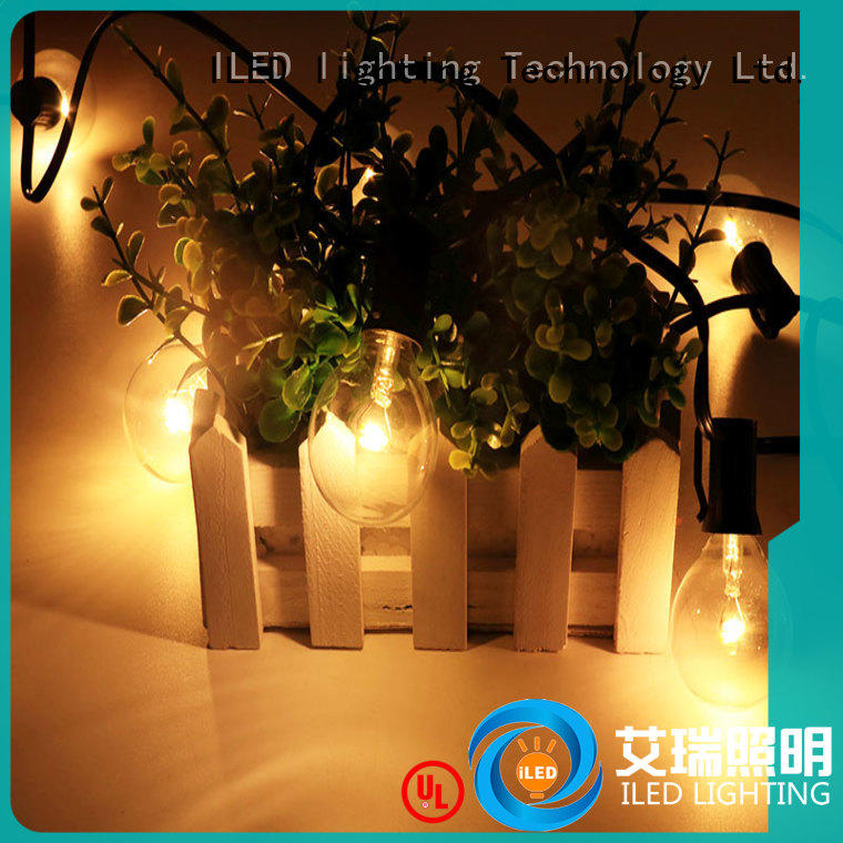 G40 Globe String Lights with Clear Bulbs EU standard Adapter (low voltage output) Indoor/Outdoor Commercial Use