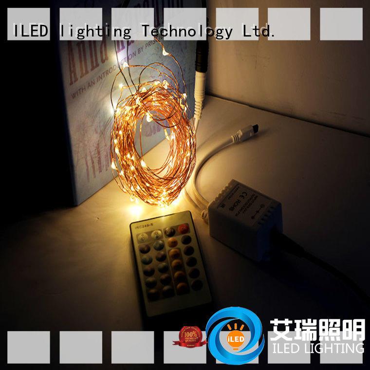 ILED plug in fairy lights customized for christmas