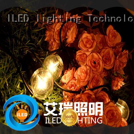 Low Voltage G50 Festoon Lighting LED Novel Lighting for Wedding Party