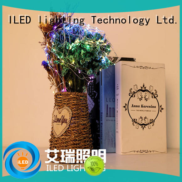 ILED battery christmas lights manufacturer for bistro