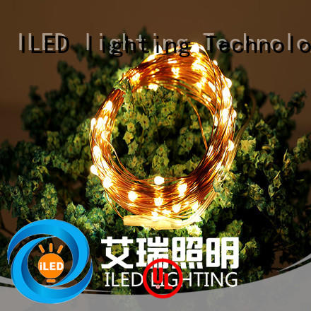 powered battery operated copper string lights personalized for Christmas