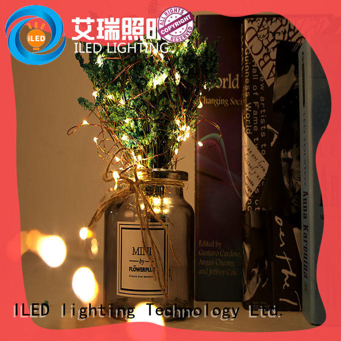 remote starry copper string lights manufacturer for decoration ILED