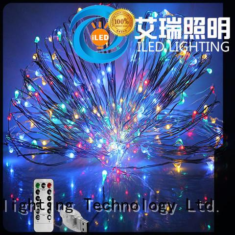 environmental copper christmas lights supplier for christmas
