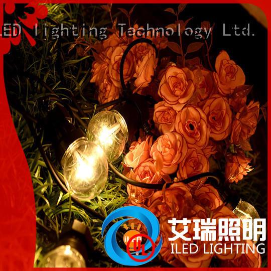 ILED standard festoon lights wedding for indoor