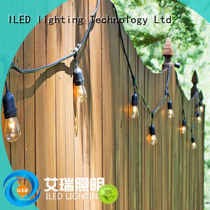 festival indoor festoon lights supplier for outdoor