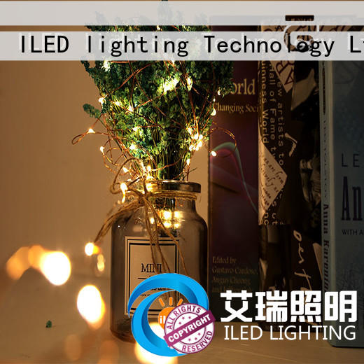 starry copper string lights diamond ILED