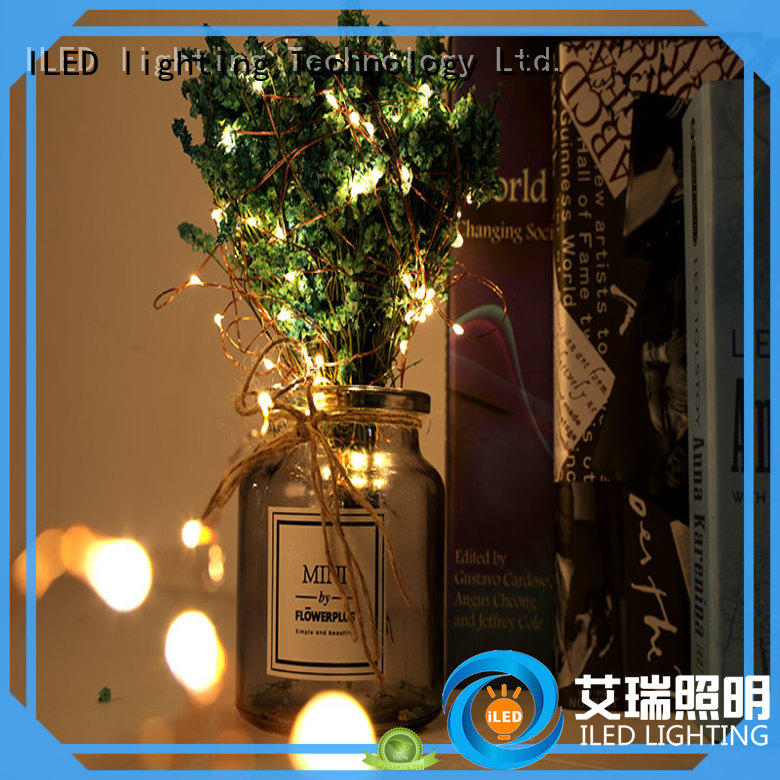 ILED usb copper wire lights manufacturer for christmas