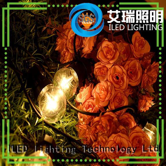 ILED white festoon lights wedding supplier for christmas