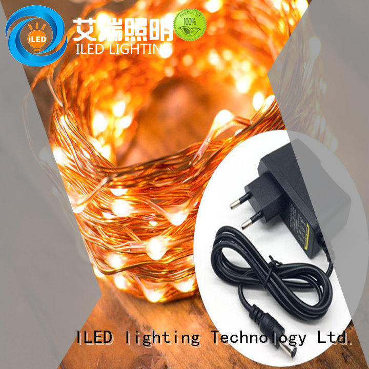 ILED dimmable plug in fairy lights manufacturer for household