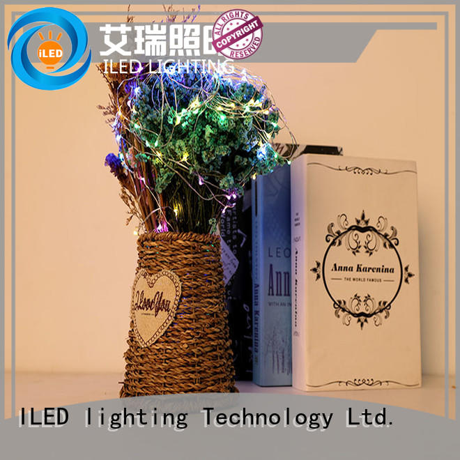ILED copper wire lights battery operated personalized for indoor