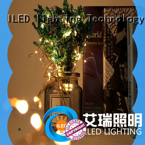 ILED usb led christmas lights copper wire design for decoration