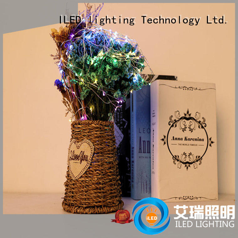 battery operated copper string lights for decoration ILED