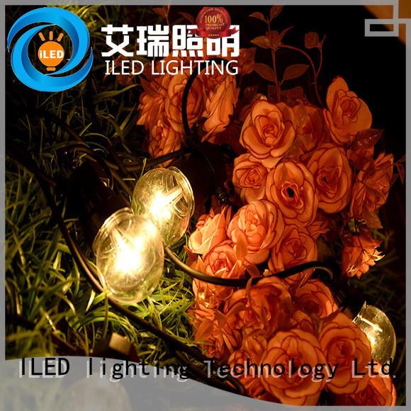 standard coloured festoon lights lamp for festival