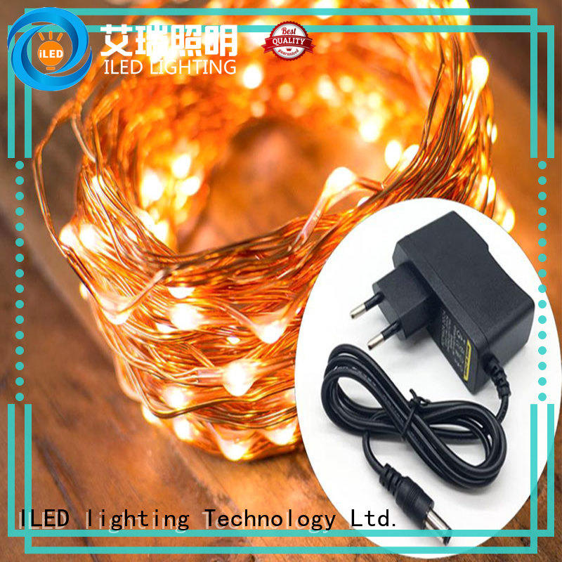 ILED remote plug in copper wire lights lamp for tree