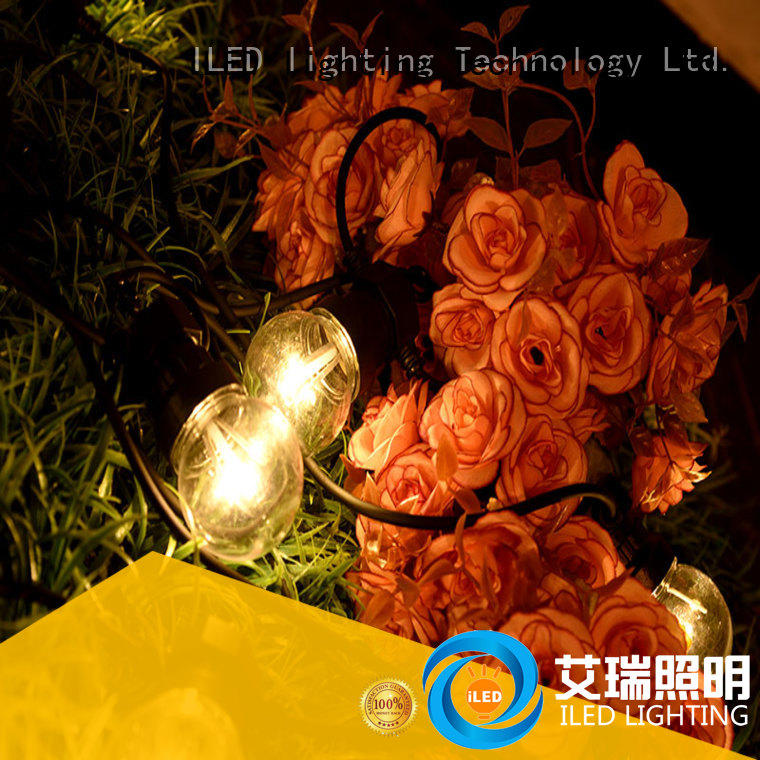 Wholesale voltage low voltage festoon lights ILED Brand