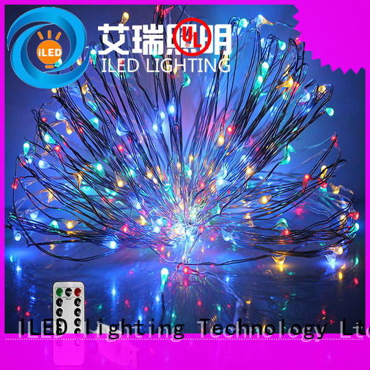 33ft usb copper wire lights usb for christmas ILED