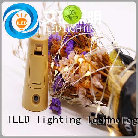 ILED waterproof copper wire lights battery operated personalized for indoor