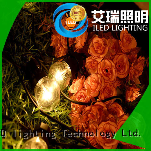 ILED low voltage commercial string lights supplier for indoor